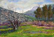 Vista Pastels Framed Prints - Springtime in Mias Canyon Framed Print by Patricia Rose Ford