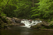 Tennessee Metal Prints - Springtime Rapids Metal Print by Andrew Soundarajan
