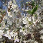 Stefan Kuhn - Springtime
