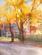 Nancy Watson - Spruce Street Maples