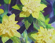 Kathy Dolan - Spurge of Yellow