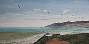 Pelican Painting Originals - Squadron of Pelicans Central Califonia by Ian Donley