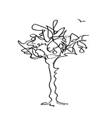 Minimal Drawings - Squiggle Tree 1 by Diane Thornton