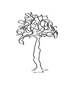 Minimal Drawings - Squiggle Tree 2 by Diane Thornton