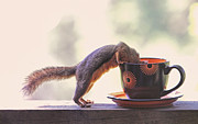 Squirrel Prints Photo Prints - Squirrel and Coffee Print by Peggy Collins