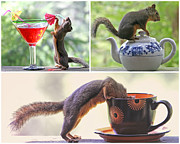 Coffee Drinking Posters - Squirrels and Their Drinks Mosaic Poster by Peggy Collins