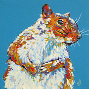 Dorothy Jenson - Squirrel