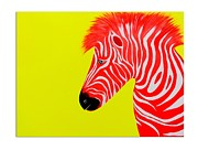 Gallerie Ak Art - St 02 The Alpha Zebra by Surita Tondon