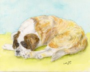 Sleeping Dog Posters - St Bernard Dog Napping Pets Animal Art Poster by Cathy Peek