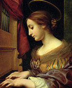Lily Painting Framed Prints - St. Cecilia Framed Print by Carlo Dolci