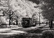 St Charles Avenue Photos - St. Charles Avenue in New Orleans by Mountain Dreams
