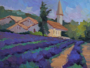 Diane McClary - St. Columne Lavender Field