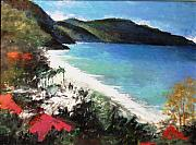 Anne-elizabeth Whiteway Prints - St. Croix as Viewed above the Carambola Resort Print by Anne-Elizabeth Whiteway