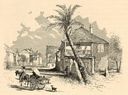 Horse And Buggy Drawings Posters - St. Francis Street in St. Augustine 1872 Engraving Poster by Antique Engravings