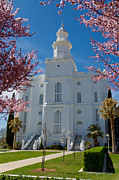 Later Photos - St George Temple 5 by Alan Nix