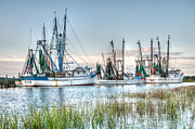 Shrimp Boats Posters - St. Helena Island Shrimp Boats Poster by Scott Hansen