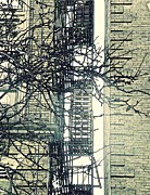 American City Prints - St Johns Ladder Print by Sarah Loft