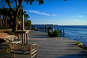 St Johns River View Print by Claire Turner