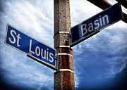 St. Louis Artist Prints - St. Louis and Basin Print by John Rizzuto