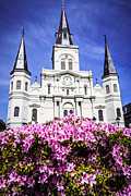 Steeples Framed Prints - St. Louis Cathedral and Flowers in New Orleans Framed Print by Paul Velgos