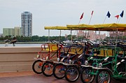 Bicycle Pyrography - St. Pete Pier Bikes by Gail Kent