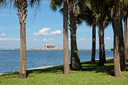 St Pete Prints - St Pete Pier through Palm Trees Print by Carol Groenen