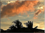 Grey Clouds Posters - St-Thomas Virgine Island Sunset 2 Poster by Danielle  Parent
