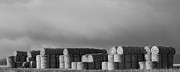 Hay Bales Photo Framed Prints - Stacked Round Hay Bales BW Panorama Framed Print by James Bo Insogna