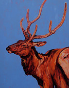 North American Wildlife Painting Posters - Stag Poster by Patricia A Griffin