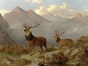 Hunting Framed Prints - Stags And Hinds In A Highland Landscape Framed Print by John Frederick Herring Jnr