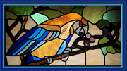 Fine American Art Glass Art Framed Prints - Stained Glass Parrot Window Framed Print by Thomas Woolworth