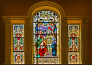 Saints Metal Prints - Stained Glass Window Cathedral St Augustine Metal Print by Christine Till