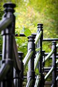 Nick Ruxandu - Stairs in Mont Royal - I