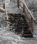 Wooden Stairs Digital Art Prints - Stairway Home Print by Jeanette C Landstrom