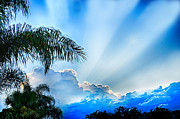 Sun Rays Originals - Stairway To Heaven by Don Durfee