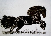 Featured Drawings Framed Prints - Stallion Framed Print by Lynette  Swart