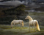 Marin County Digital Art Posters - Stallions of the Gods Poster by Melinda Hughes-Berland