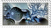 Stamp Seashells In Blue  Print by Danielle  Parent
