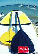 Pet Photo Prints - Stand Up Paddle Board Print by Stylianos Kleanthous