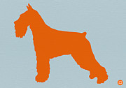 Cute Dog Digital Art Prints - Standard Schnauzer Orange Print by Irina  March