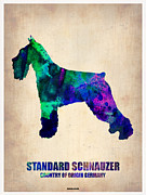 Cute Mixed Media Metal Prints - Standard Schnauzer Poster Metal Print by Irina  March