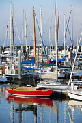 Marina Metal Prints - Standout Metal Print by Mike  Dawson