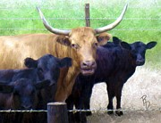 Standout Steer Print by Ric Darrell