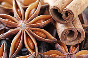 Aniseed Prints - Star anise and cinnamon spices Print by Jelena Vasjunina