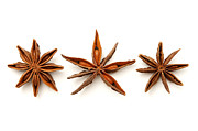 Aniseed Posters - Star anise fruits Poster by Fabrizio Troiani