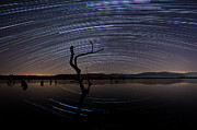 Startrails Framed Prints - Star arches Framed Print by Hristo Svinarov