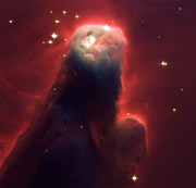 Nebula Images Photos - Star Former Cone Nebula by The  Vault