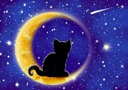 Nick Gustafson - Star Gazing Cat