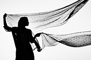 Indian Girl Posters - Star Shawls in the Wind Poster by Tim Gainey