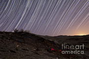Barren Land Prints - Star Trails And Rock Art In The Central Print by Amin Jamshidi